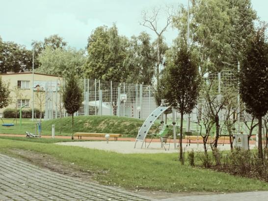 CWR Stara 03